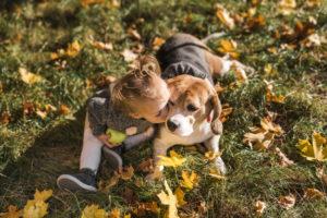 terapia asistida con perros para niños con autismo